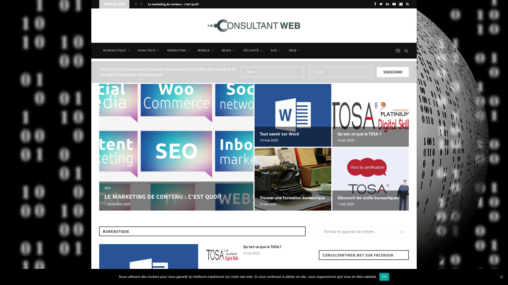 consultantweb.net